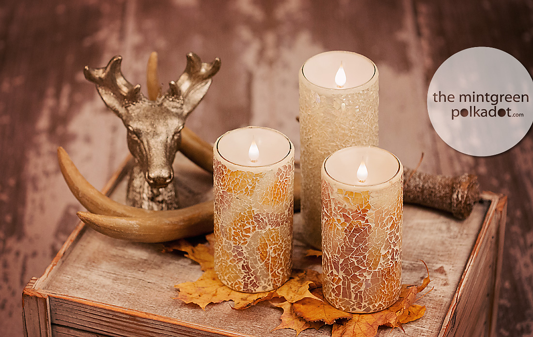 homedeco ideas - petfriendly candle setup - elambia candles kerzen
